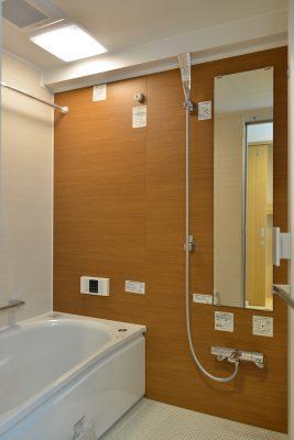 bathroom_after_DSC_9884